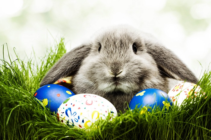 HAPPY EASTER TO ALL CUSTOMERS